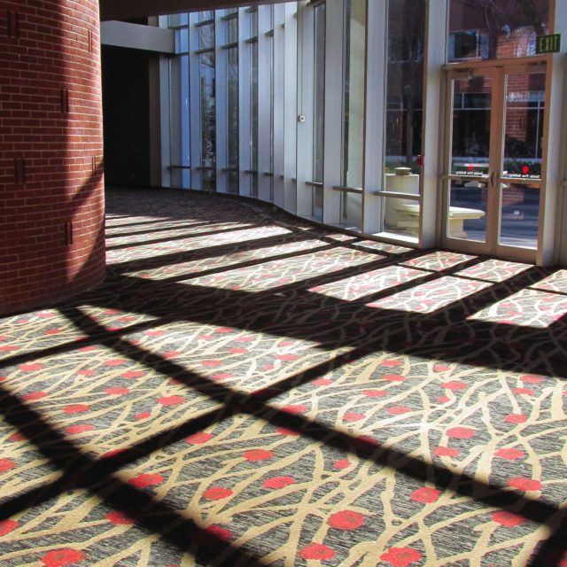 Dark Carpet with Nature Inspired Elements at the Georgia Center