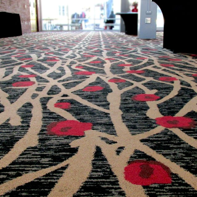 Carpet In Natural Lighting at GA Center